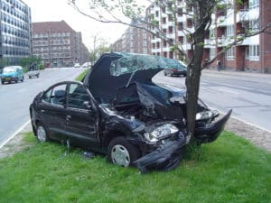 rented car crashed to a tree